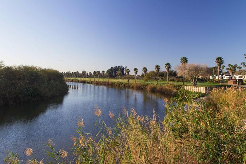 Lake and Greens